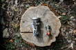 Robens Fire Midge Titanium Stove