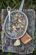 Kniha Outdoorová kuchařka - Petra Pospěchová